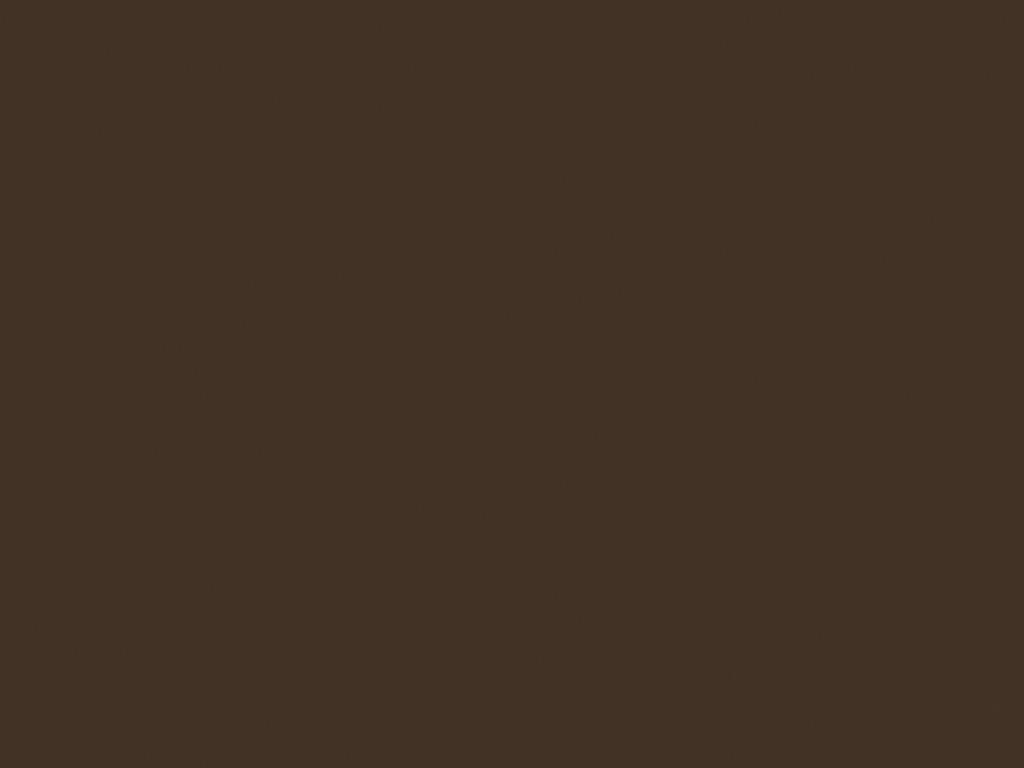 Рулонные ворота цвет коричневый