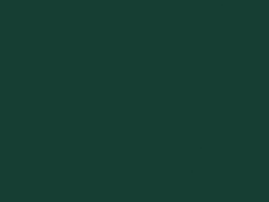 Рулонные ворота цвет зеленый